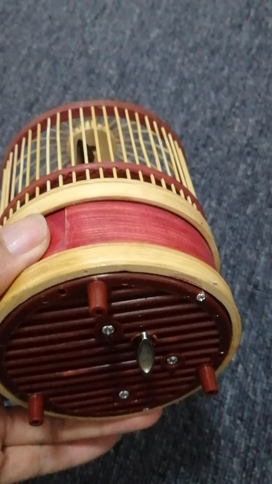Singing bird-2
